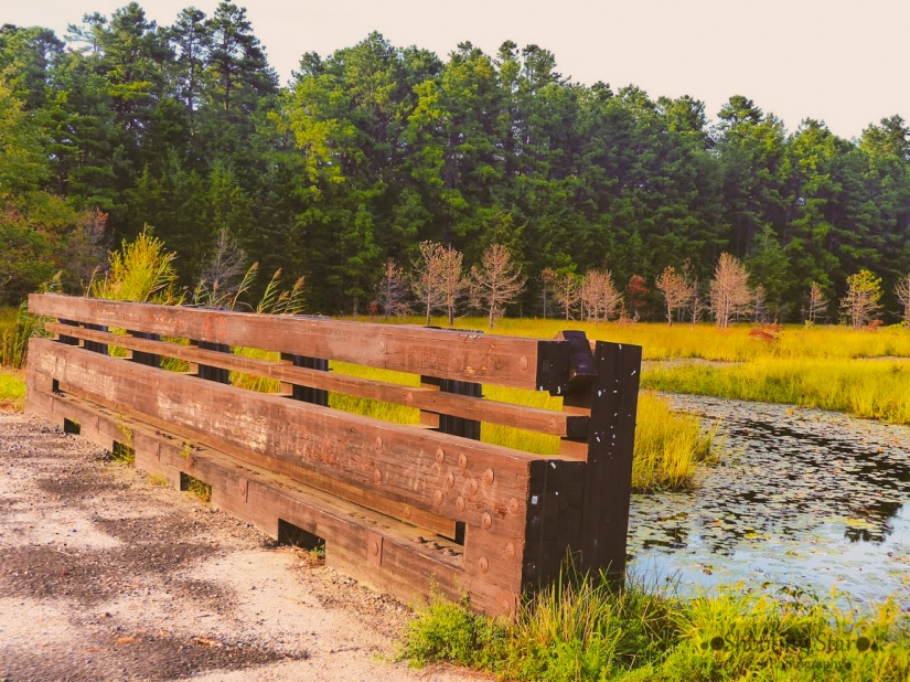 pretty lake spot-Edit